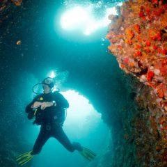 Merülni itt – Sail Rock / Thailand