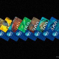Merülésszám igazoló kártyák