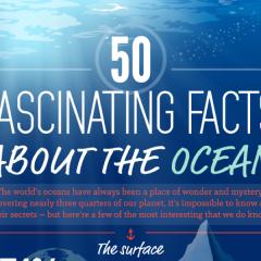 50 tény az óceánokról