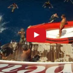 Miért és hogyan búvárkodunk?! Dokumentum film a Titán Búvár Iskolával