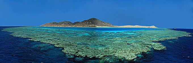 búvár szafari, dél egyiptom, vörös-tenger, búvárkodás, Zabargad