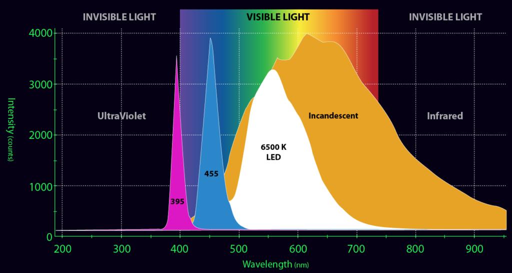 UV-dive-buvar-ejszaka-feny
