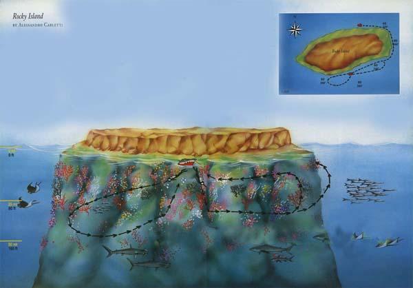 búvár, búvárkodás, Rocky sziget, vörös-tenger